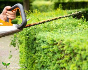 Tuin Onderhoud 2